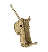 trophy, rhino animal head
